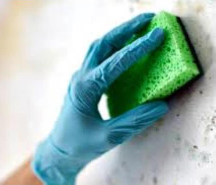 Gloved Hand Wiping a Surface with a Sponge
