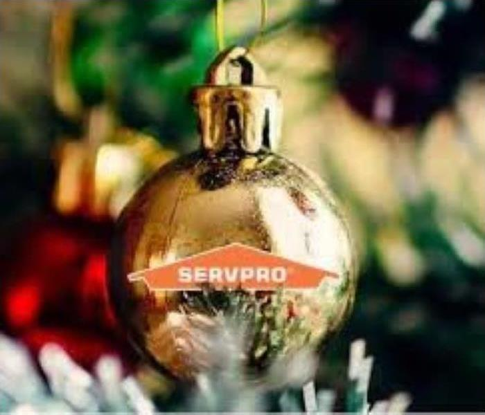 Christmas Tree Limbs with Ornament & SERVPRO Logo