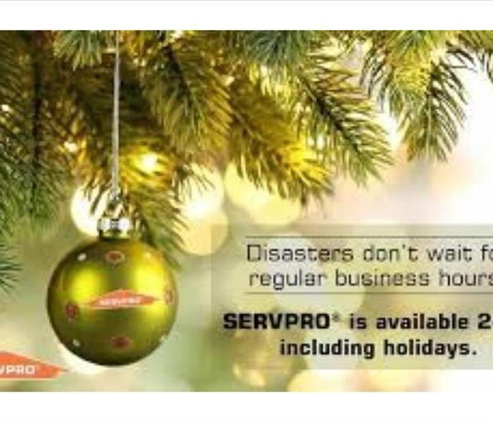 Christmas Tree Limbs with Ornaments & SERVPRO Logo & Wording