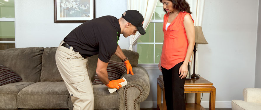 Milwaukee, WI carpet upholstery cleaning